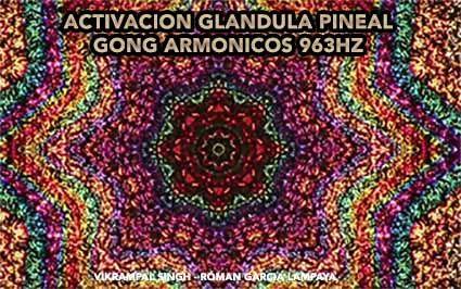 gong pineal